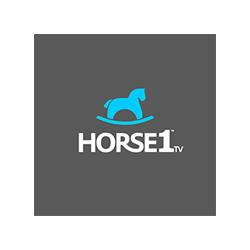 msa-client-horse-1